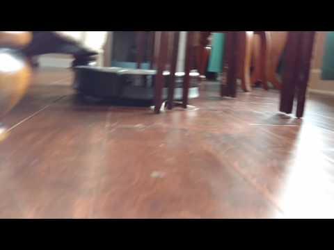 Roomba 700 series cleaning hard wood floors