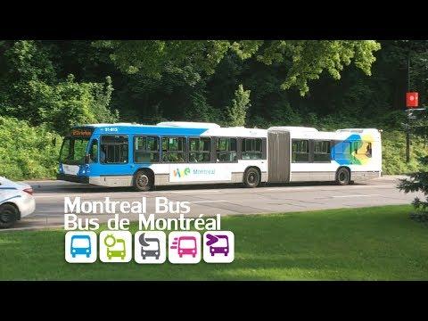 Montreal public transport (vol. 2 - Bus)