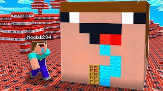 7 Ways to Prank Noob1234's Minecraft House!