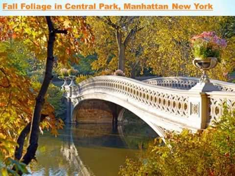 central park wedding new york