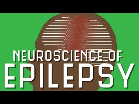 Neuroscience of Epilepsy