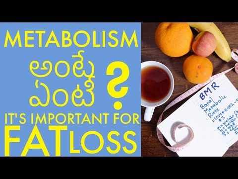 what is metabolism in telugu - foods that speed up your metabolism!
