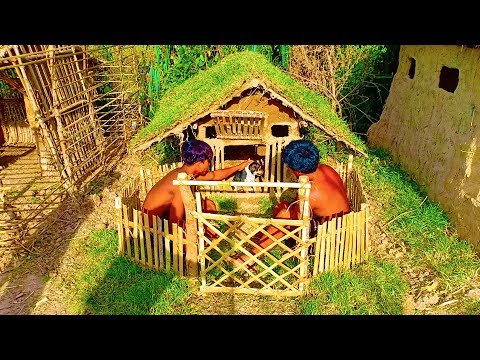 Builder Best Videos: Building Wild Dog House