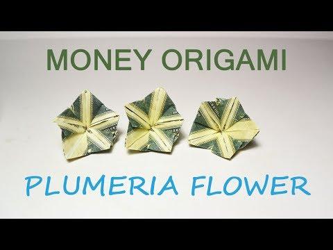 Money Plumeria Origami Flower Dollar Tutorial DIY Folded No glue