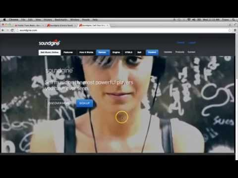 How to build an Artist Producer website part 2