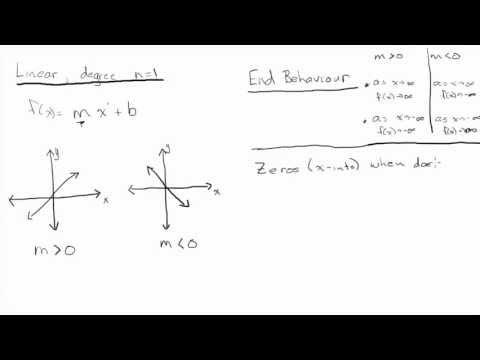 Characteristics of Polynomials (Linear and Quadratic)