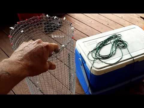 Homemade crawfish traps