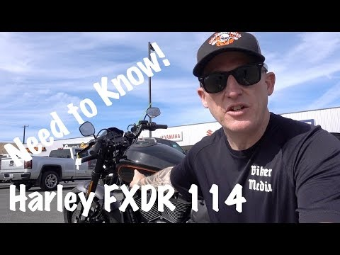Harley FXDR 114-2019-What You Need to Know!