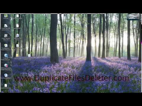 How To Delete Duplicate Files & Photos Off Of A Windows PC. Try DuplicateFilesDeleter.com