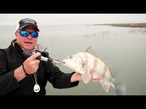 Tight Line TV fishing in Beaufort, SC