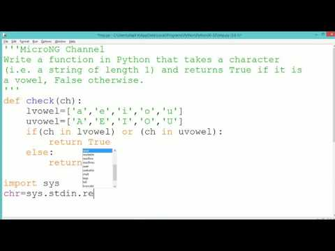 Python Program - Vowel check