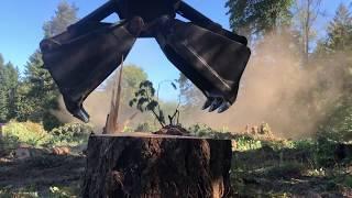 Big machines harvesting HUGE trees!
