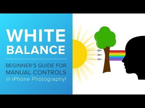 A Beginner's Guide for Manual Controls in iPhone Photography: White Balance