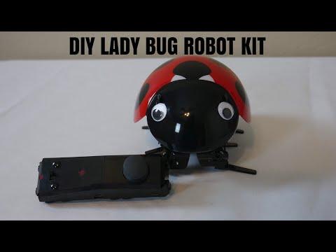Virhuck DIY Ladybug Robot Kit, 2.4GHz RC Robotic DIY Building Set