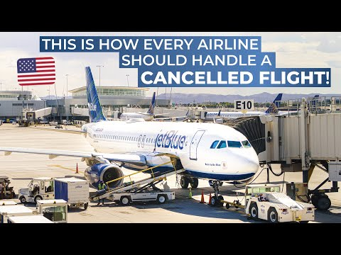 The JETBLUE experience | RETURNED TO THE GATE, CANCELLED FLIGHT, MISSED CONNECTION