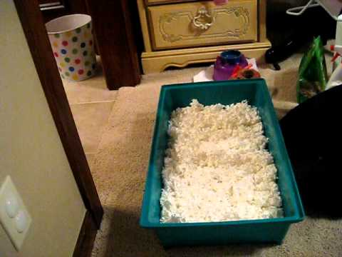 How to clean your hamster's cage!