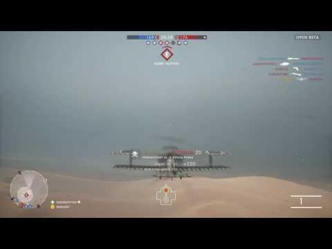 BF1 plane horse roadkill