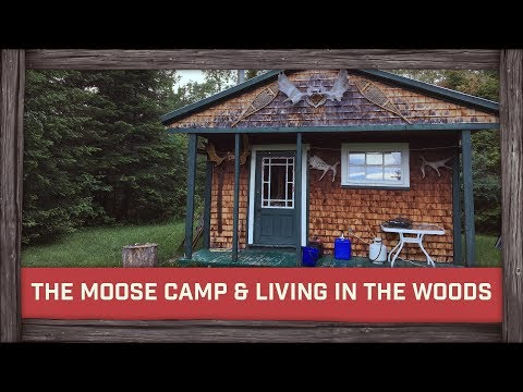 My Summer Living in The Woods & Inside The Moose Camp