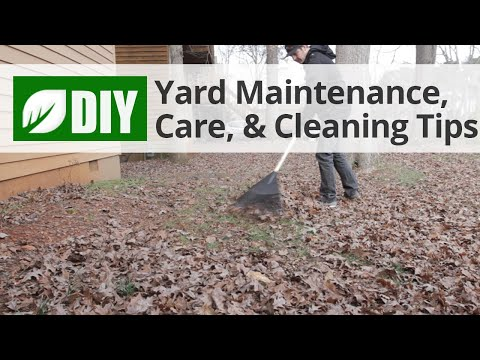 Yard Maintenance, Care, & Cleaning Tips