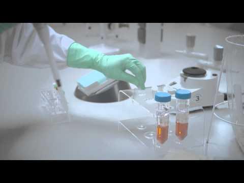 Rapid & easy solution for reliable mycoplasma contamination control