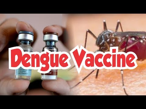 Philippines Stop Sale of Dengue Vaccine Due to Health Risk