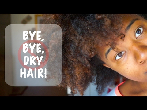 NATURAL HAIR   How to RESTORE DRY HAIR ft. The Mane Choice