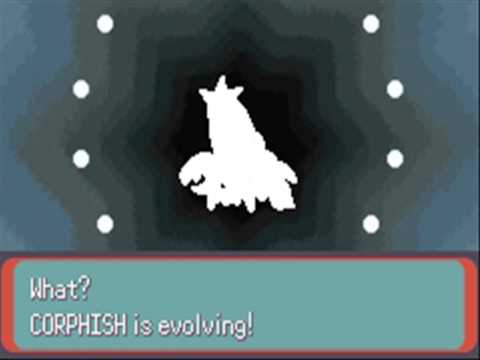 Pokemon Emerald Corphish Evolves to Crawdaunt