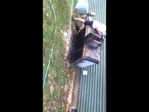 Getting rid of ground bees