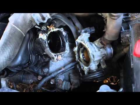 What looks throttle body gasket leak