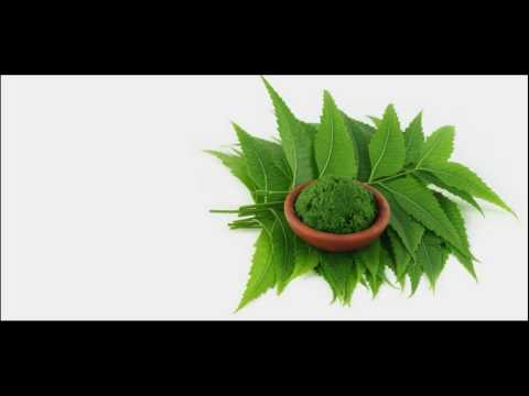 Neem Oil Promotes Hair Growth How To Use At Home