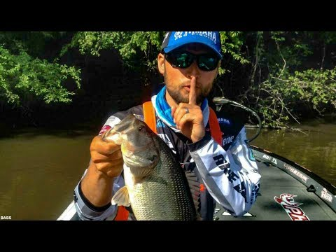 Spring Bass Fishing SECRETS! Best Tips to Catch Bass Off Beds