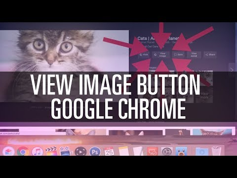 Get 'View Image' Button Back in Google Chrome