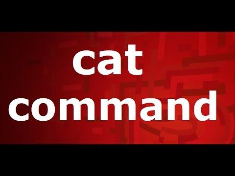 cat(concatenate) commnd in linux