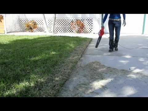 Homelite Electric Blower Sweeper.mp4
