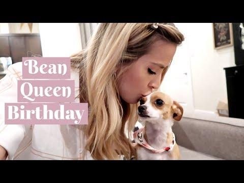 LUNA BEAN'S BIRTHDAY GIFT | leighannvlogs