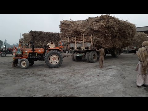 FIAT 480 Fails To Pulling Heavy Sugarcane Trolley in Huda Sugar Mill