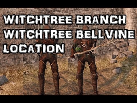 Dark Souls 2 Witchtree Branch & Witchtree Bellvine Location