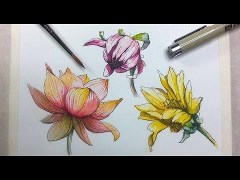 How To learn Fabric Painting - Class 1 - Busma Ahsan