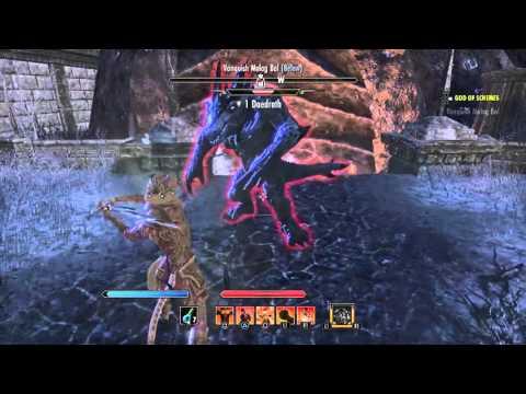 The Elder Scrolls Online: Becoming a God