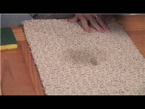 Stain Removal Tips : How to Clean Beer From Carpet