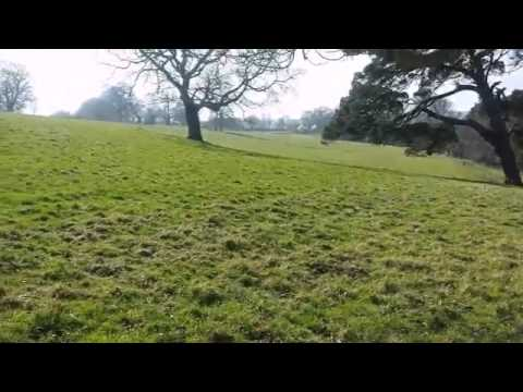 Metal detecting - Sunny day North Wales