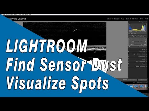 Lightroom Tip: Using Visualize Spots Tool to Find Sensor Dust