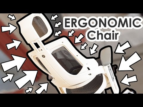 Ergonomic Chair Finally Arrived!