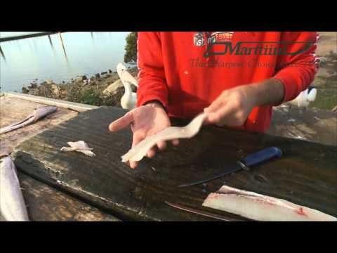 Rapala Tip of the Week - Cleaning Whiting & Leather Jacket