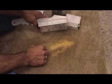 Carpet dye videopart1 of 2 parts, Spot remover,dye carpet spot cleaner