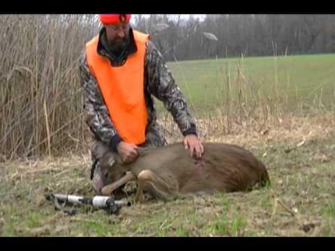 Dan Stef Shows Doe Taken in First Shotgun Deer Season