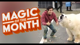 New Years Resolution Tricks MAGIC OF THE MONTH January 2020