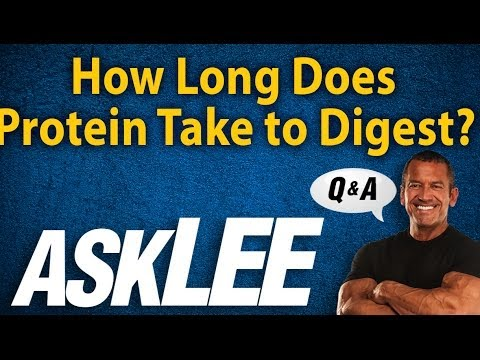 How Long to Digest Protein - With Lee Labrada