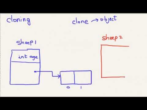 Java Clone - Advanced topic