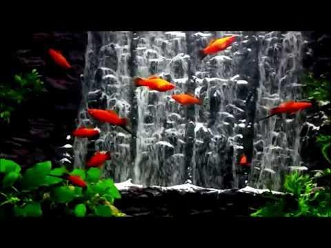 Powerful waterfall  -Aquarium sand waterfall 39-